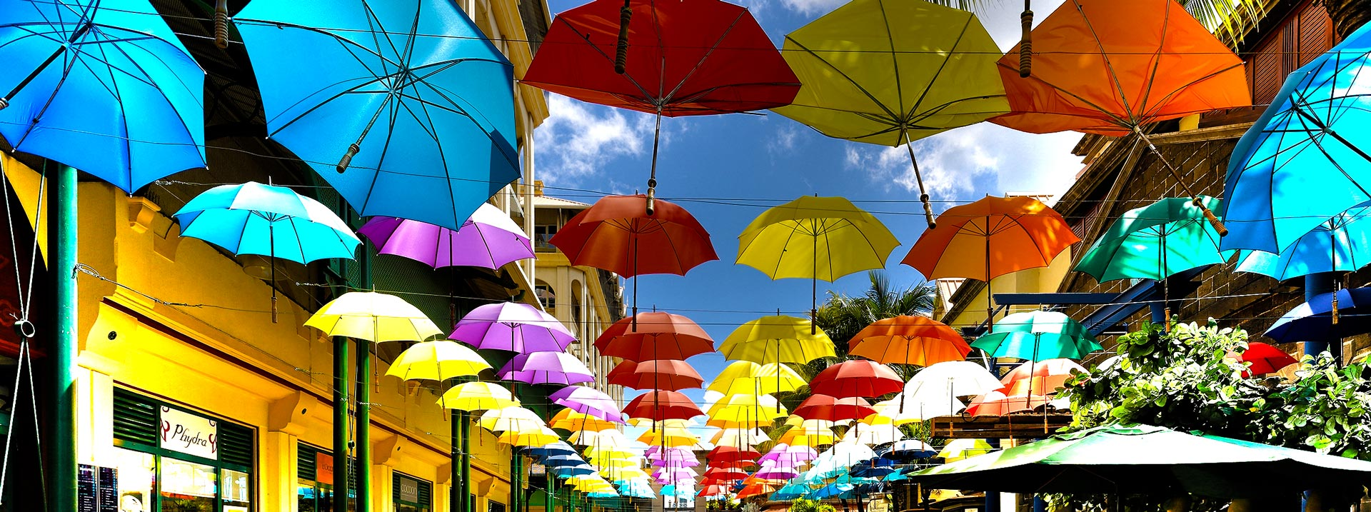 keeping-cool-in-the-shade-umbrellas